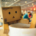 Adventures of Danbo, the New Cardboard Internet Celebrity
