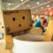 Adventures of Danbo, the New Cardboard Internet Celebrity