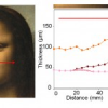 New light on Leonardo Da Vinci's faces